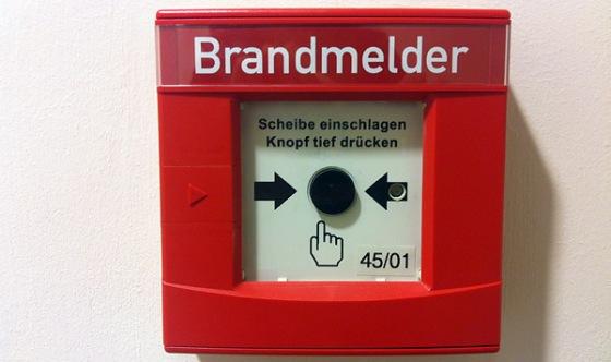brandmelder (foto bernhard jenny)