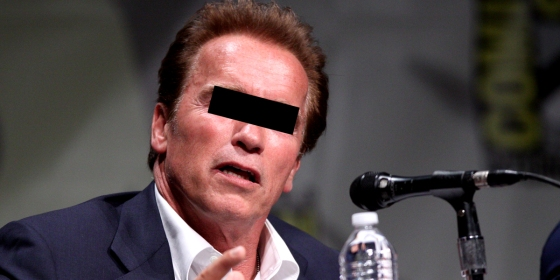 arnold schwarzenegger foto: gage skidmore, creative commons flickr bearbeitung: bernhard jenny