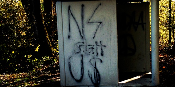 aktuelle nazischmiererei in salzburg foto: bernhard jenny