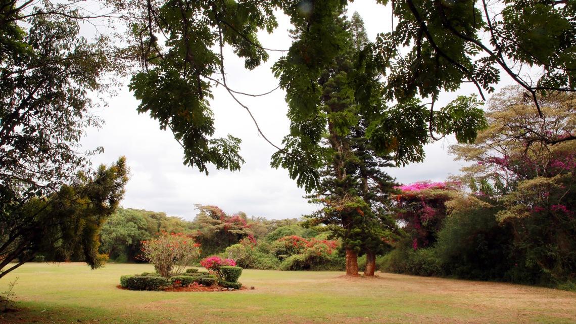 cristina colombo kenia nairobi IMG_0219.jpg